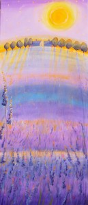 Lavender fält/Lavender Field